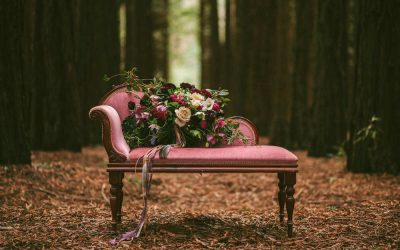 Lovable weirdos #1 – the pink settee