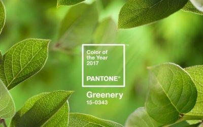 Pantone's Colour of the Year; Kermit, Trump and marijuana