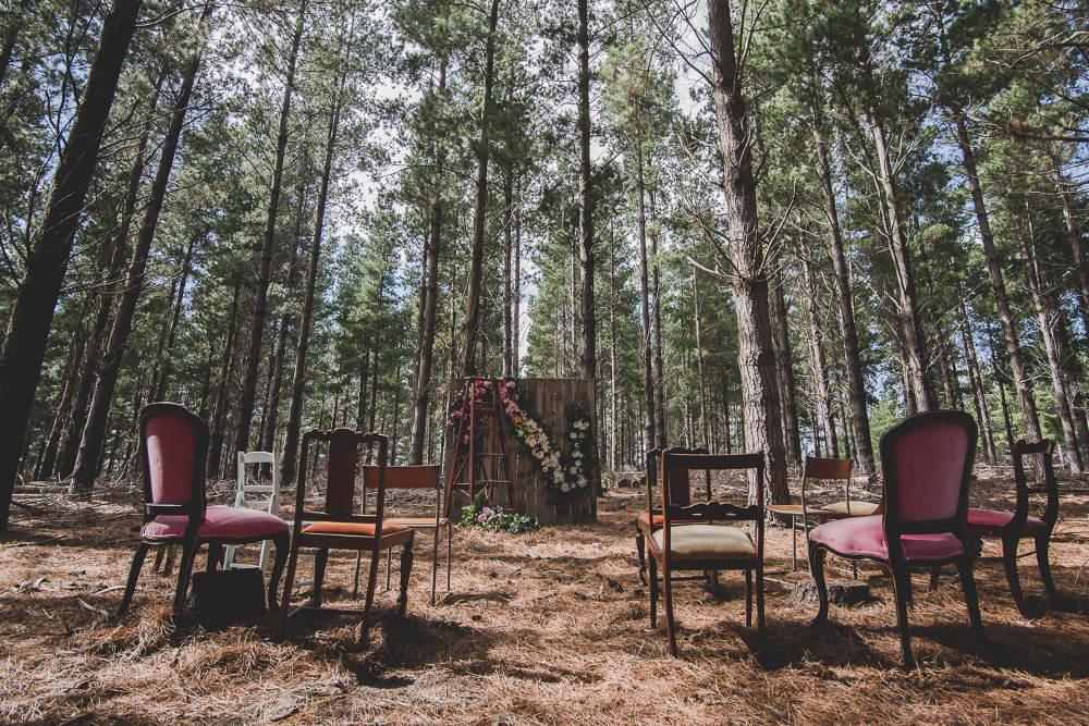 Vintage+pine+forest+wedding